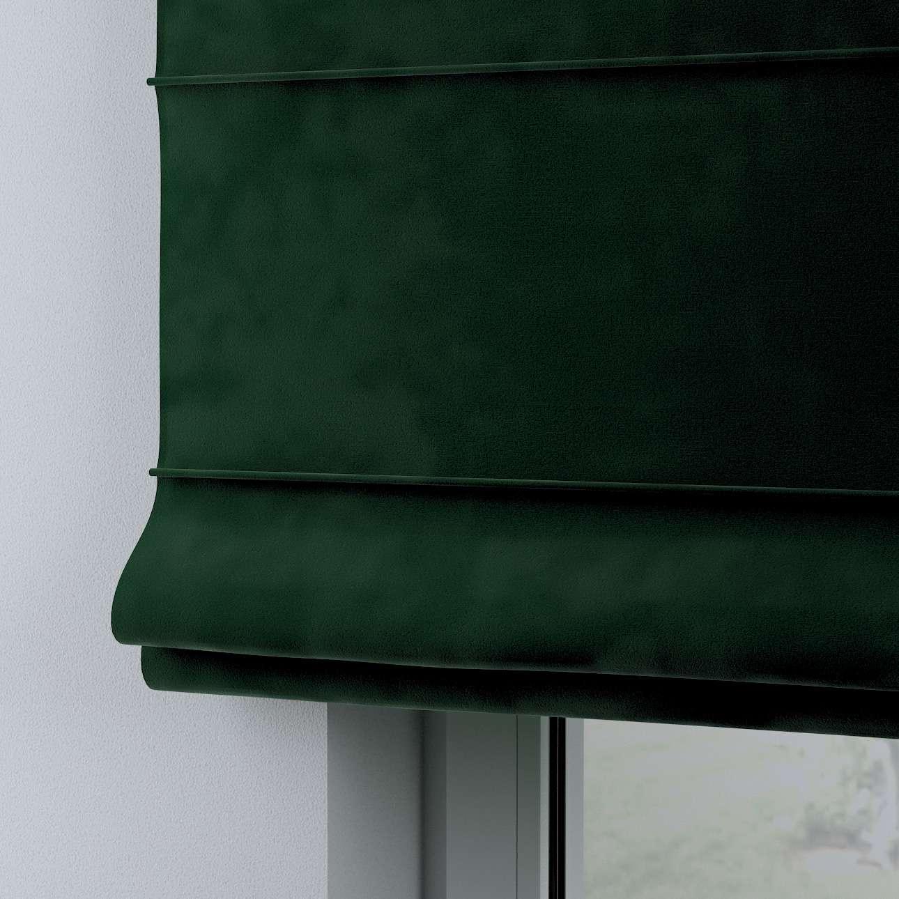 Romanetės Billie kolekcijoje Posh Velvet, audinys: 704-13
