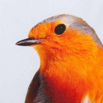 Robin 45x45 cm