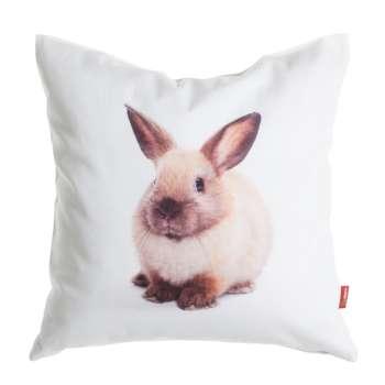 Sweet Bunny 45x45 cm  - Dekoria.dk