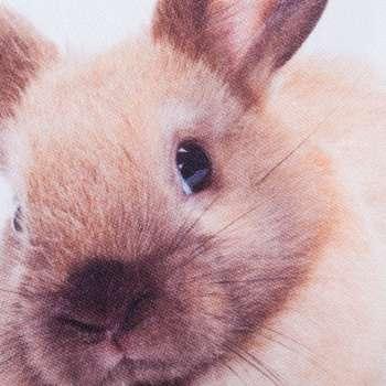 Deko-Kissenhülle Kaninchen 45x45 cm