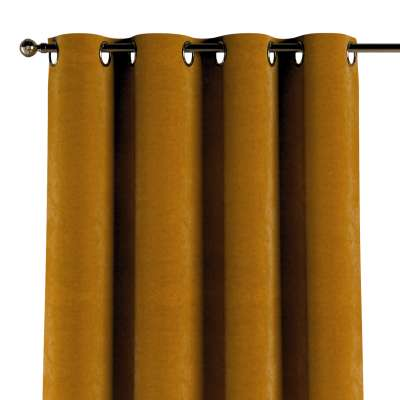 Eyelet curtain 704-23 mustard Collection Velvet