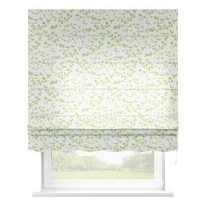 Florence roman blind  80 x 170 cm (31.5 x 67 inch) in collection Aquarelle, fabric: 140-76