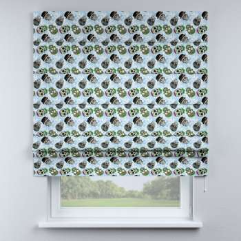 Padva roman blind  in collection Freestyle, fabric: 141-01