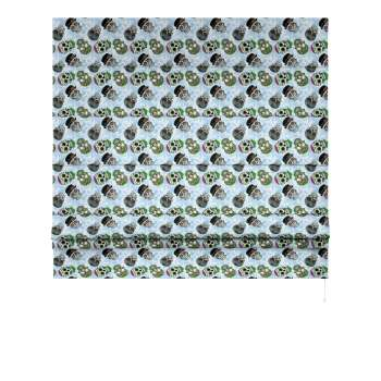 Padva roman blind  80 x 170 cm (31.5 x 67 inch) in collection Freestyle, fabric: 141-01