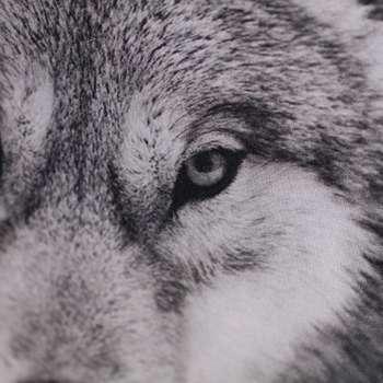 Wolf 45x45cm