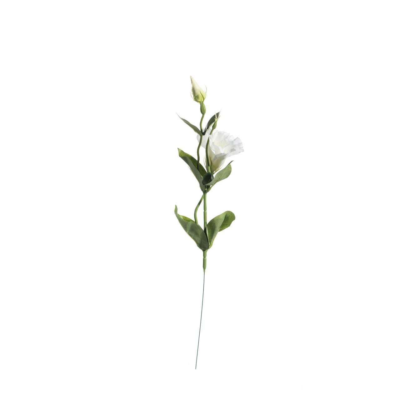 Kunstblume Eustoma 48cm, 14 × 8 × 48 cm   Dekoration > Dekopflanzen > Kunstpflanzen   Weiß - Grün   Kunststoff - Stoff - Metall   Dekoria