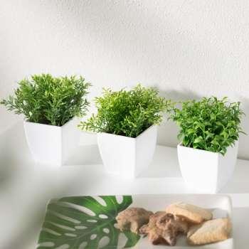 Dekoracja Mini Plants Herbs wys. 13cm