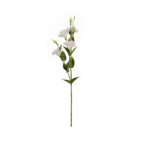 Kwiat Eustomy wys. 80cm