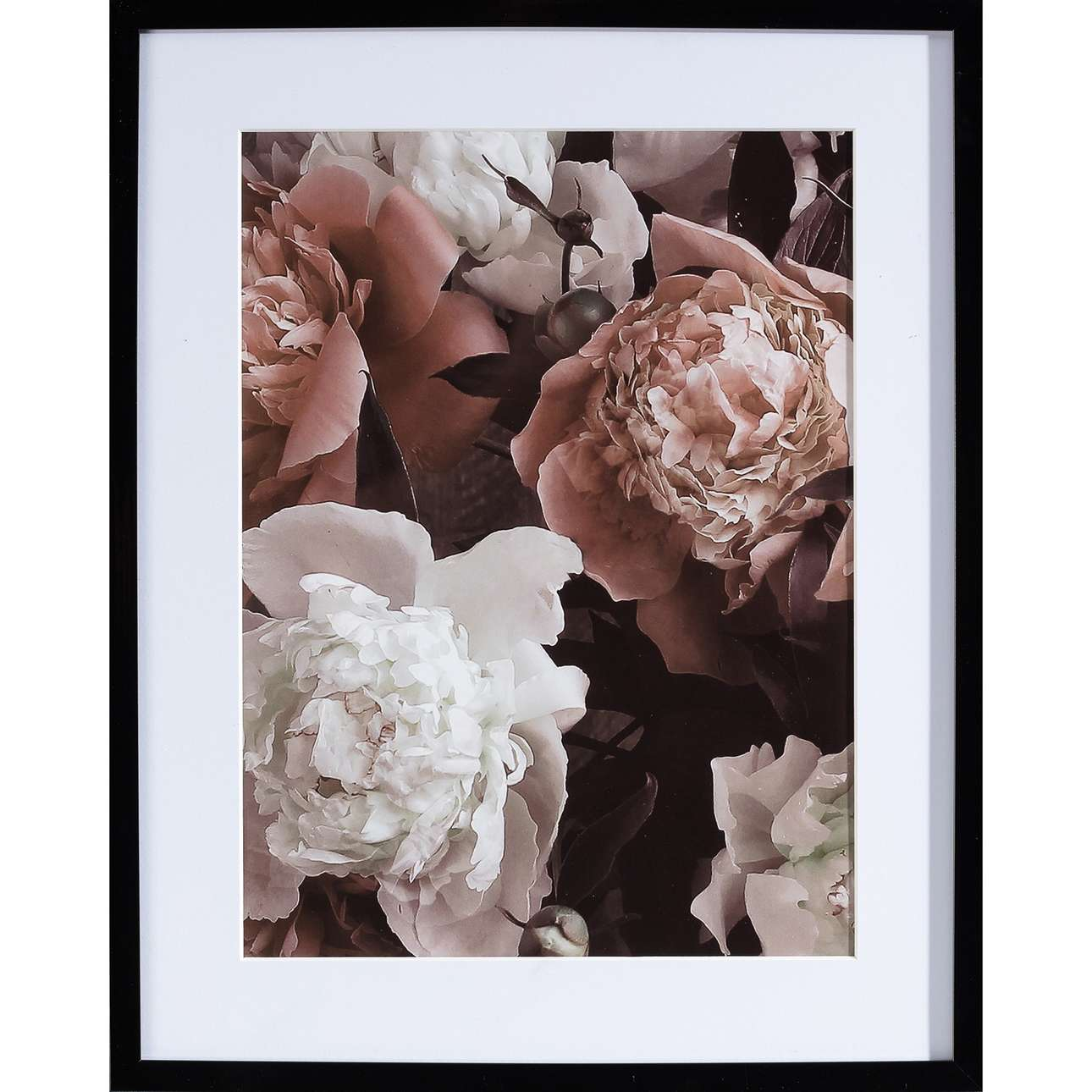 Obraz Peony Sunset II 40x50cm