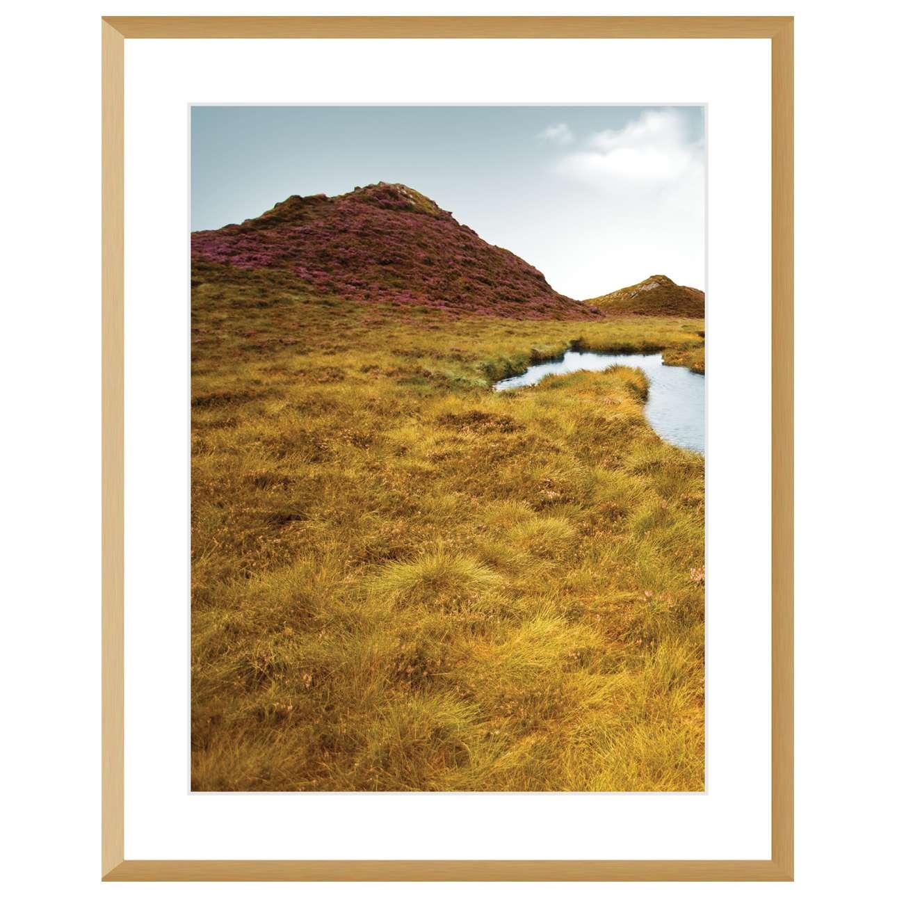 Bild Grassy Field I 40x50cm, 40x50cm | Dekoration > Bilder und Rahmen | Dekoria