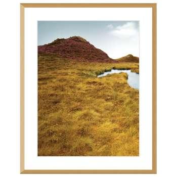 Obraz Grassy Field I 40x50cm