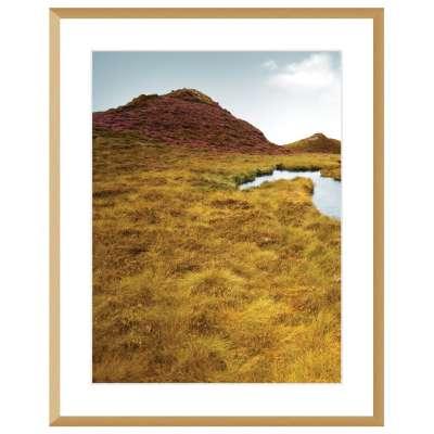 Billede med ramme Grassy Field I 40x50cm Billeder med ramme - Dekoria.dk