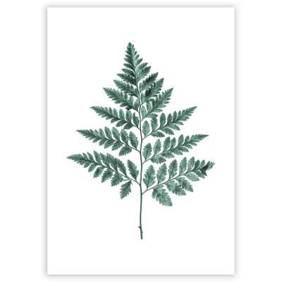 Plakat Fern Emerald Green