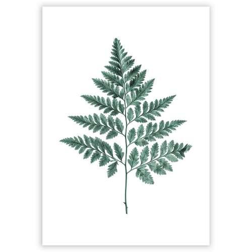 Poster Fern Emerald Green