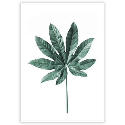 Plakat Leaf  Emerald Green