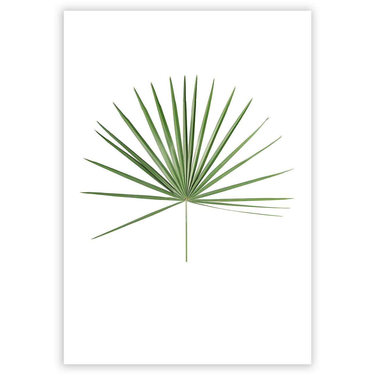 Poster Tropical Leaf Green