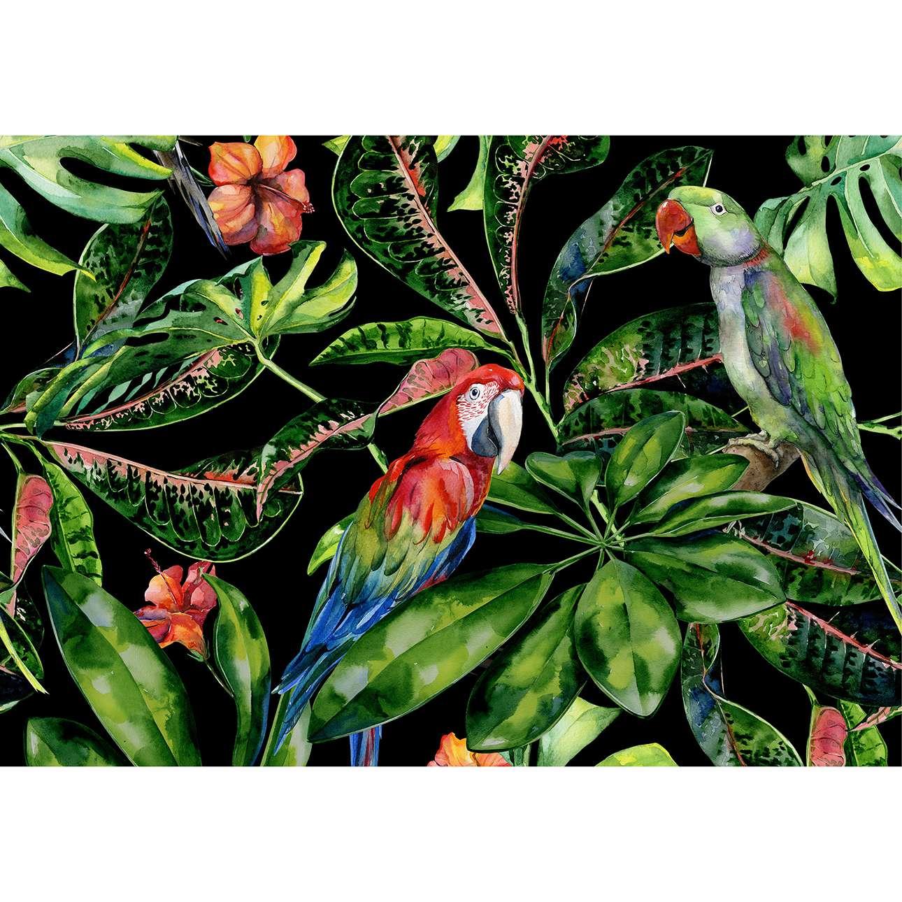 -na-plotnie-Tropical-Birds
