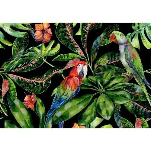 Leinwandbild Tropical Birds