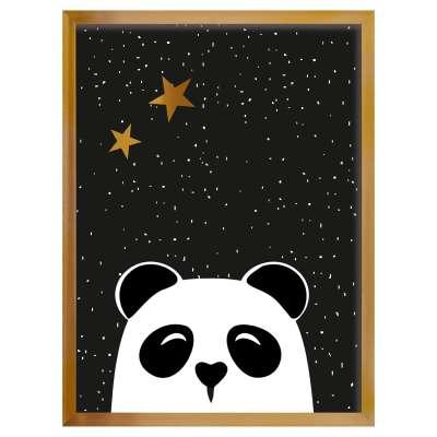 Obrázek Funny Band panda 30x40 cm