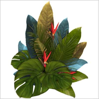 Aufkleber  Jungle Leaves