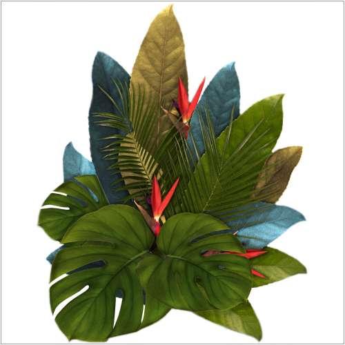 Aufkleber  Jungle Leaves