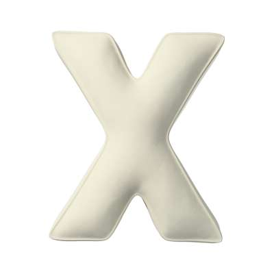 Raidė pagalvėlė X kolekcijoje Posh Velvet, audinys: 704-10