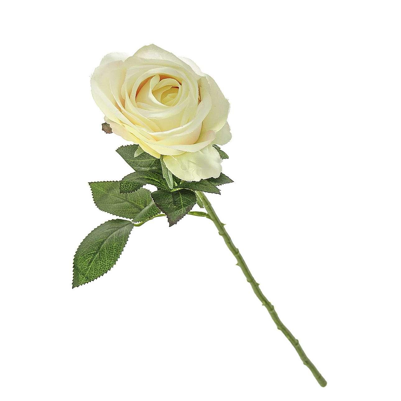 Květina Rose Cream výška 67cm