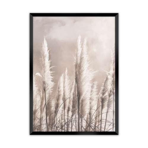 Poster Grass 30x40cm