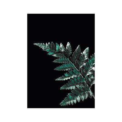 Plakat Dark Fern Leaf