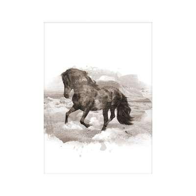 Plakat Horse