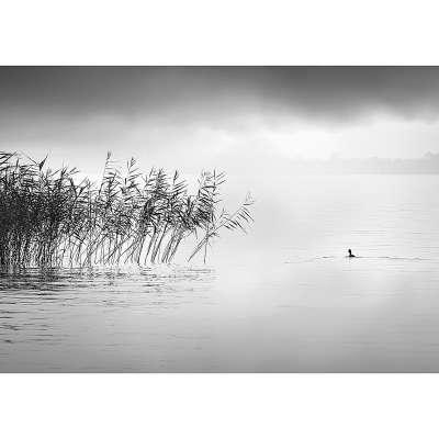 Leinwandbild By the Lake II