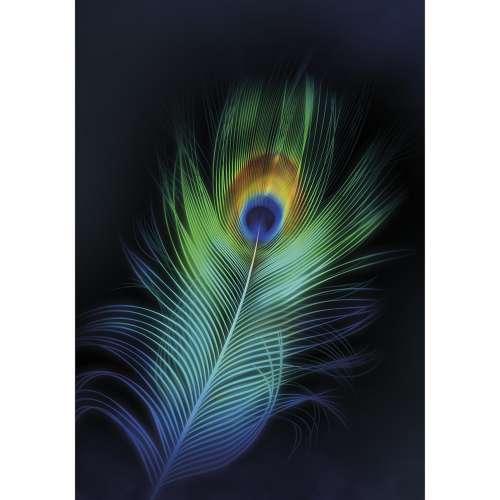 Canvas Print Peacock Eye