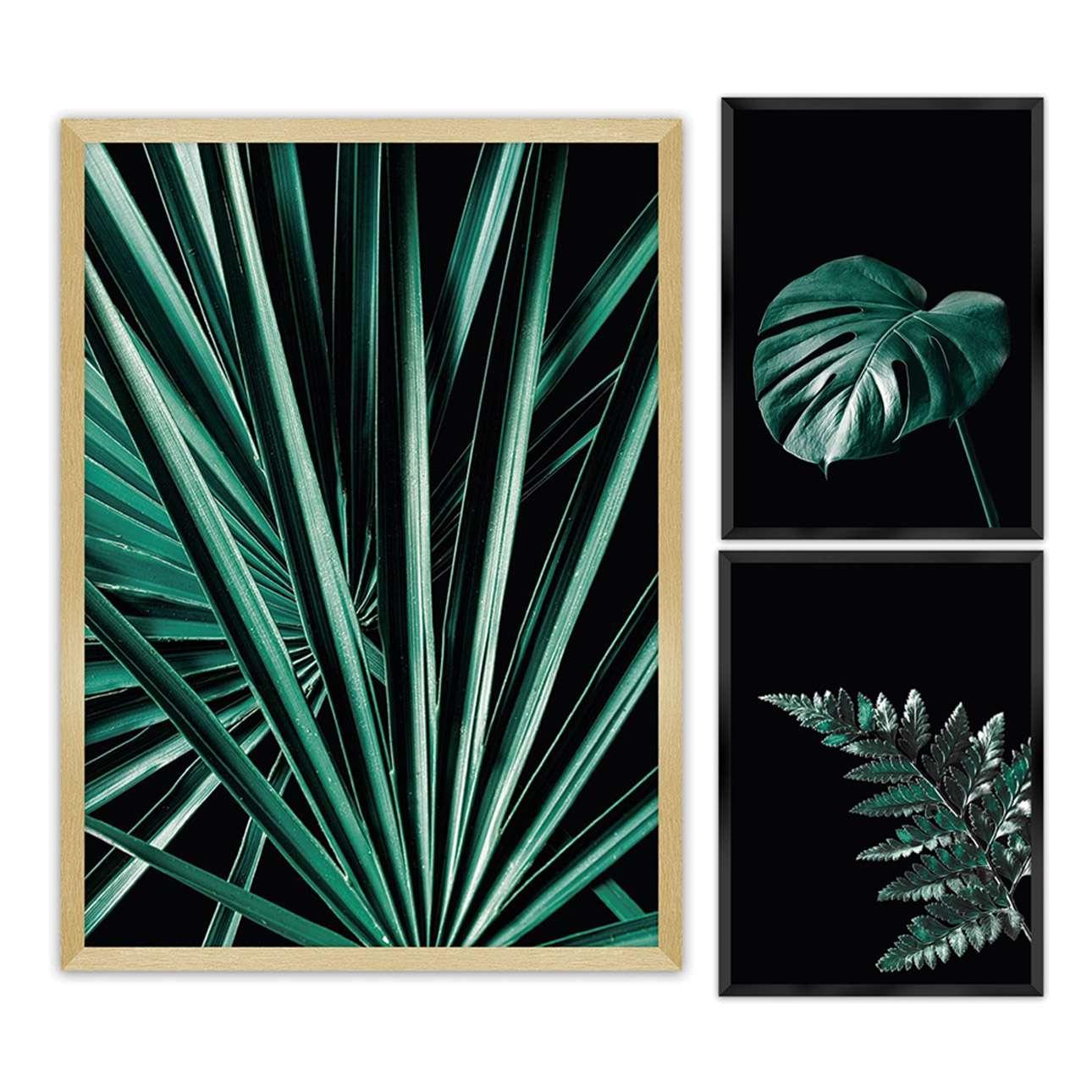 Zestaw obrazów Botanica 3szt.