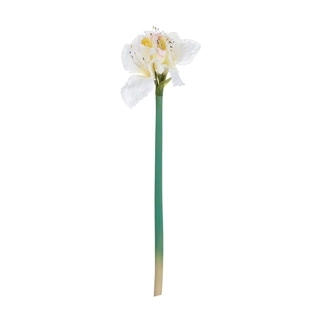 Květina um. Amaryllis White 75cm