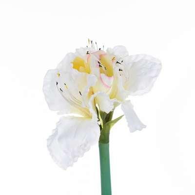 Kwiat Amaryllis White 75cm Sztuczne kwiaty - Dekoria.pl