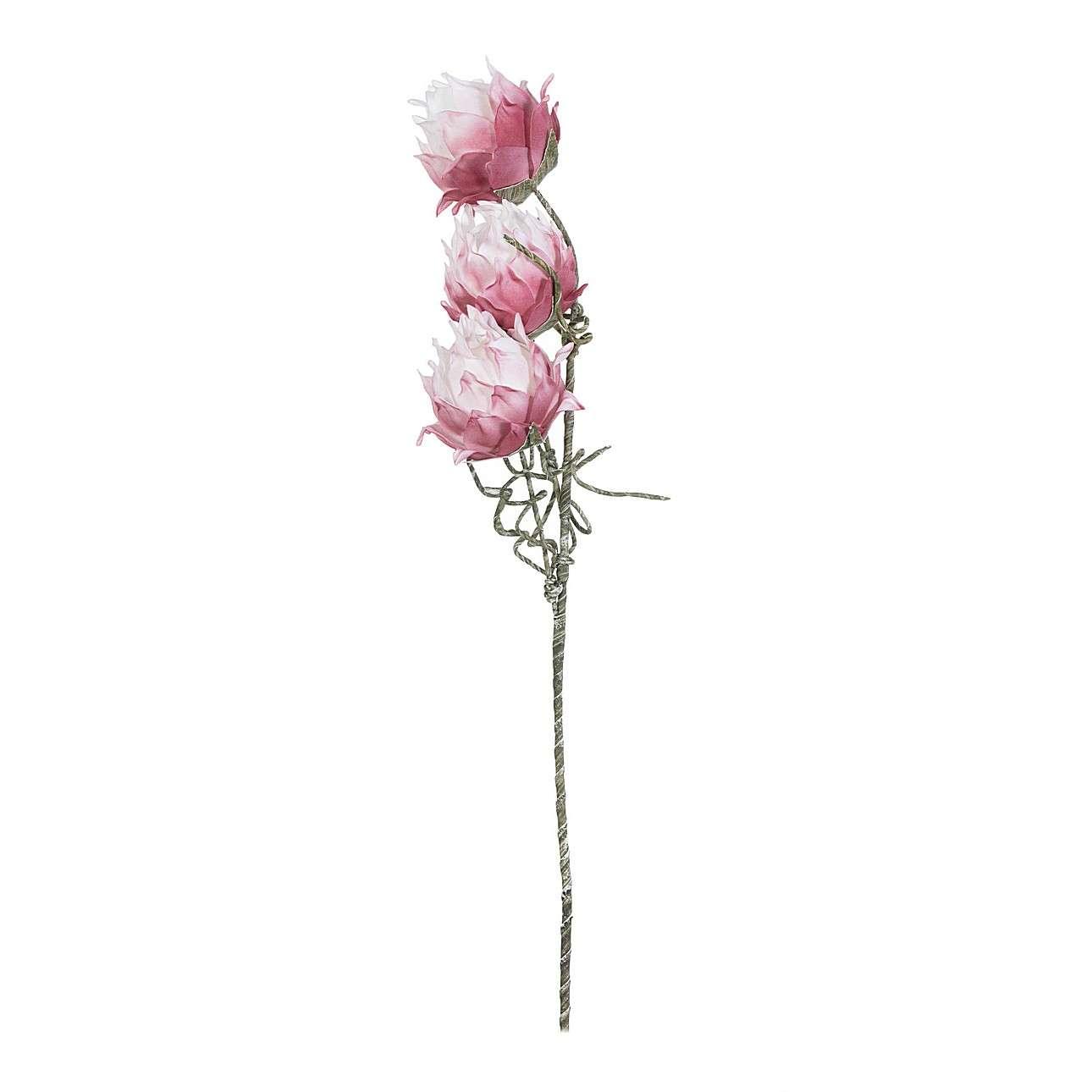 Květina um. Protea 75cm