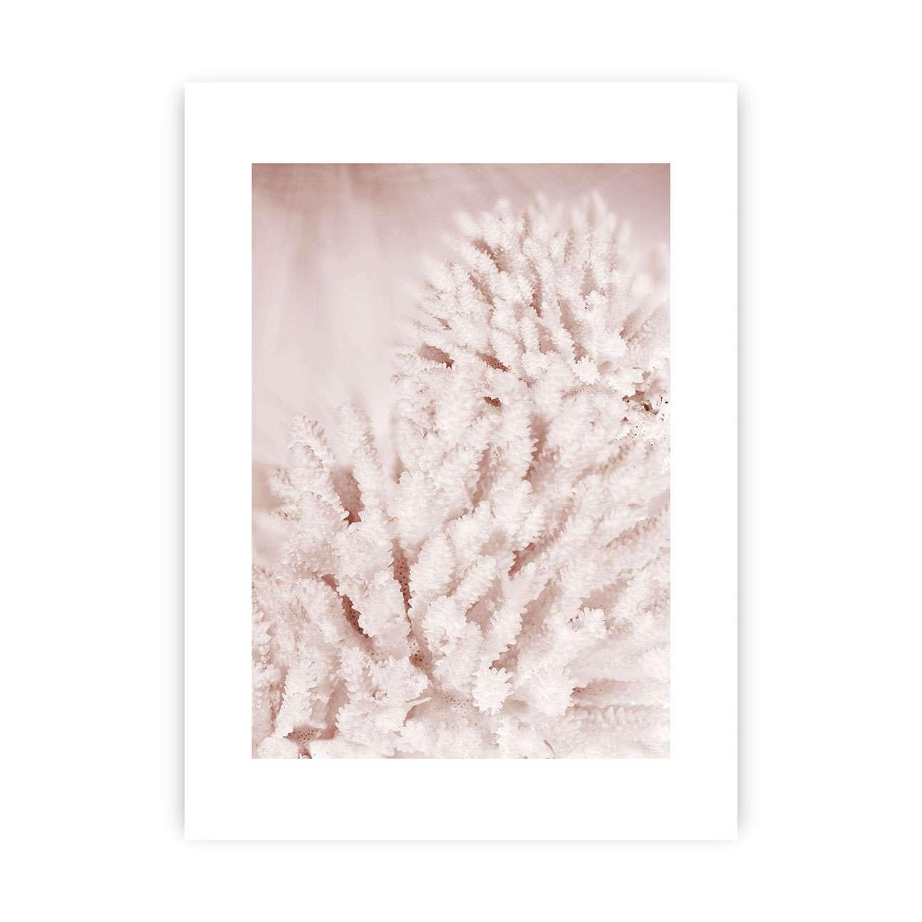 Plakát Pastel Pink II