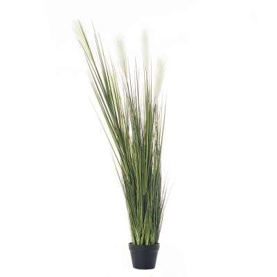 Rostlinná dekorace Pampas Grass výška 145cm