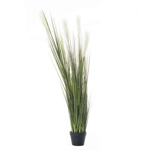 Dekoracja roślinna Pampas Grass 145cm