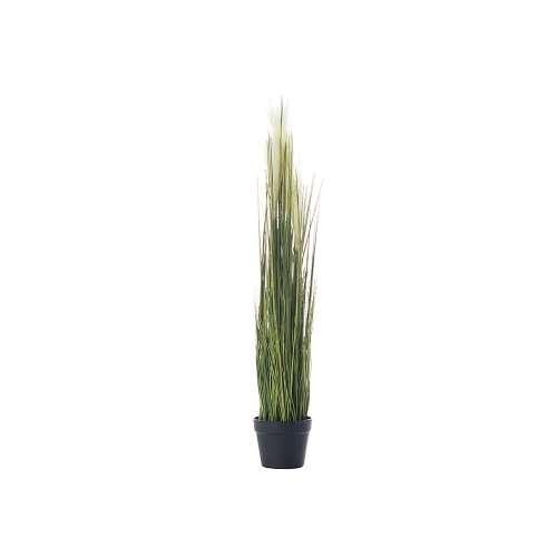 Rostlinná dekorace Pampas Grass výška 100cm