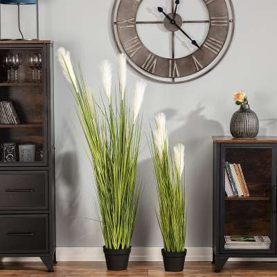 Dekoration Pampas Grass 100cm