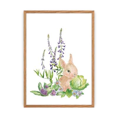 Forest Story picture Hare