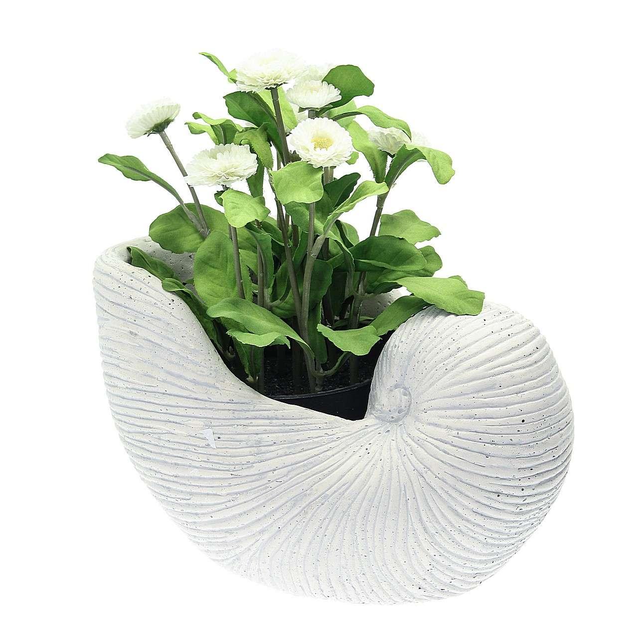 Doniczka Shell