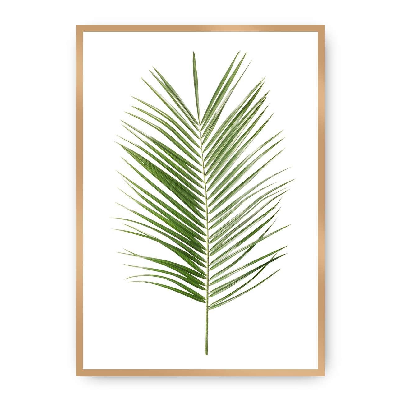 Poster Palm Leaf Green, 50 x 70 cm, Rahmen wählen: gold   Dekoration > Bilder und Rahmen > Poster   Dekoria