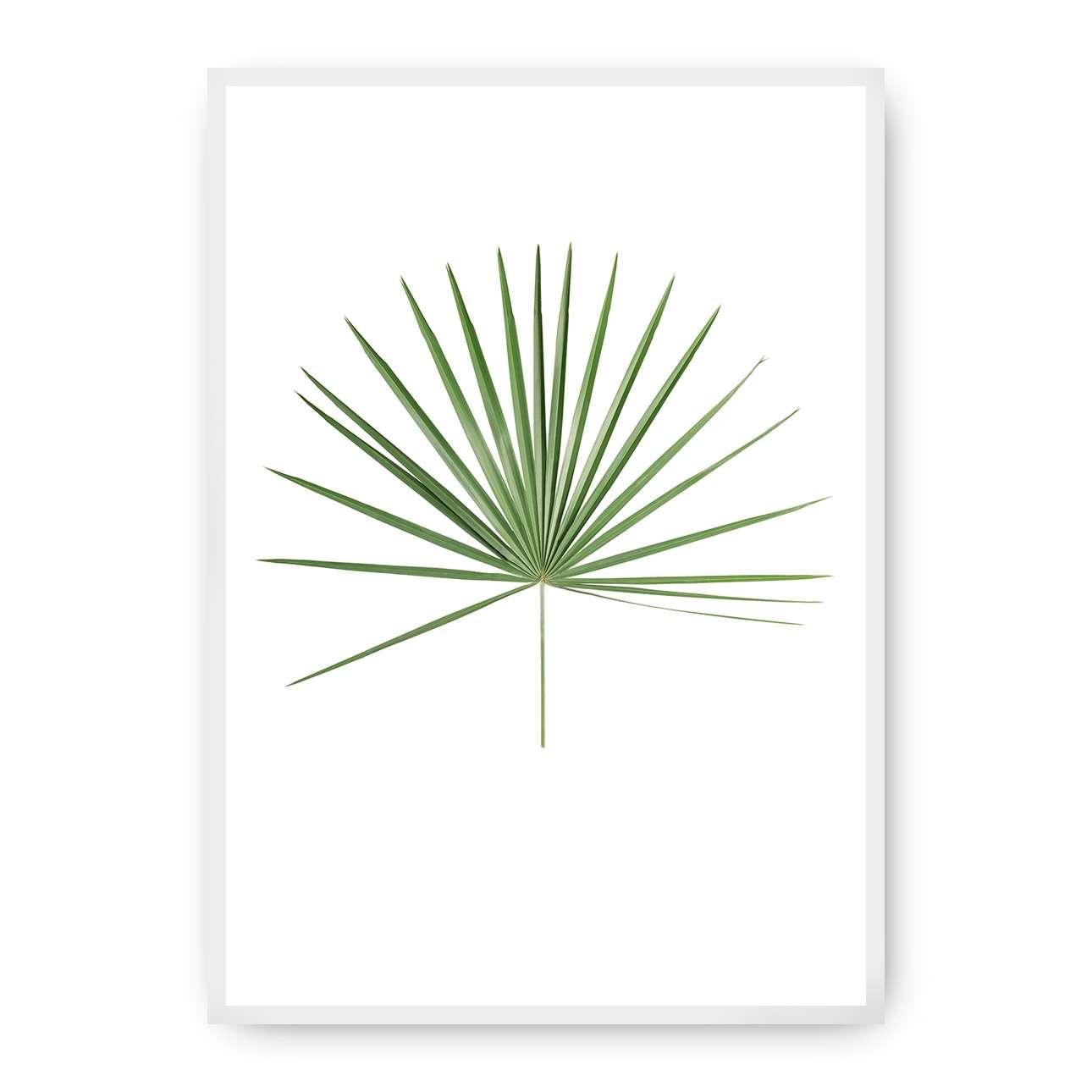 Poster Tropical Leaf Green, 50 x 70 cm, Rahmen wählen: weiss   Dekoration > Bilder und Rahmen > Poster   Dekoria