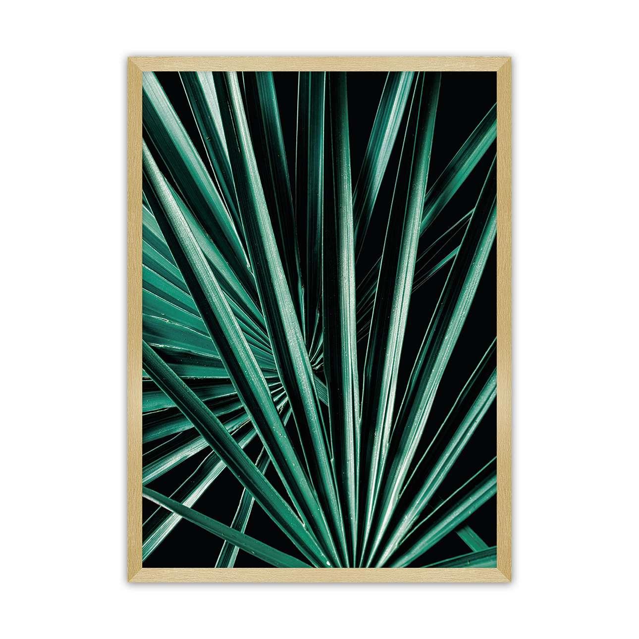 Plakát Dark Palm Tree