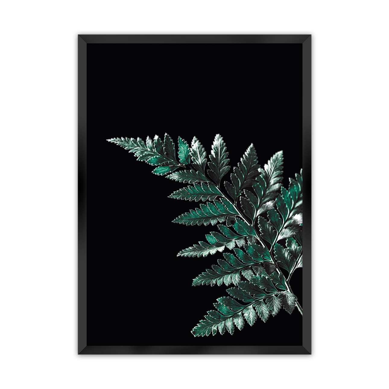 Plakát Dark Fern Leaf