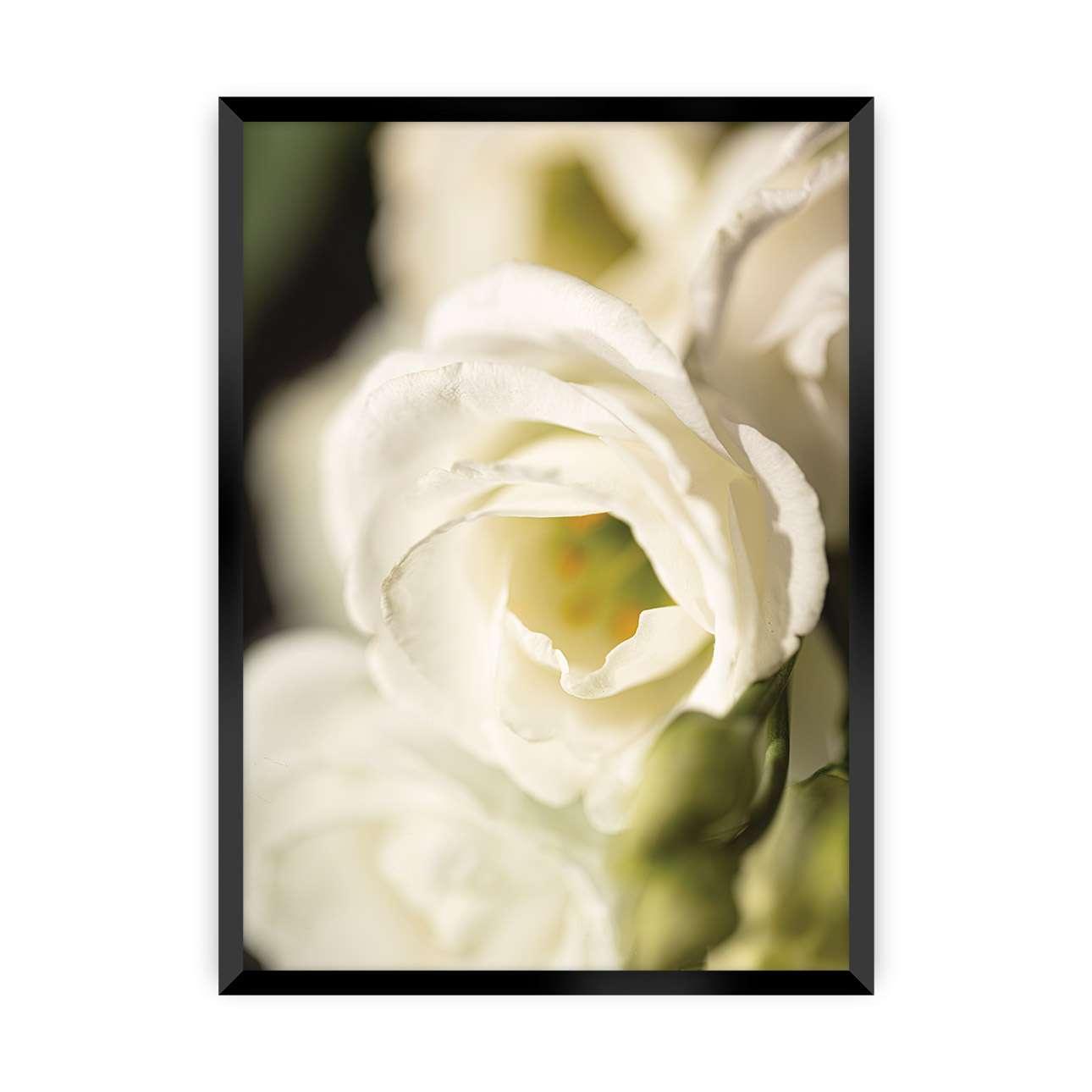Plakát Flower Wall