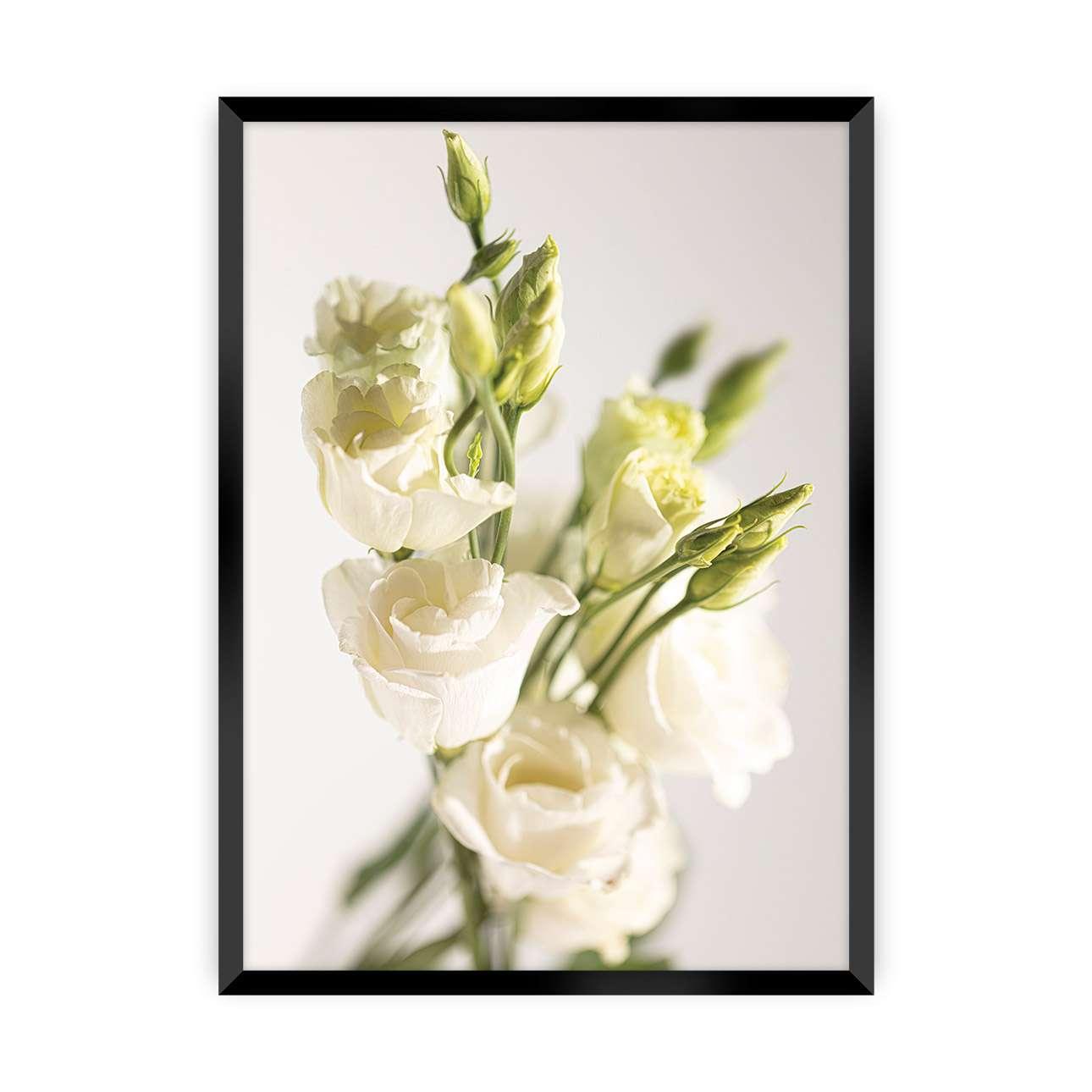 Plakát Elegant Flowers