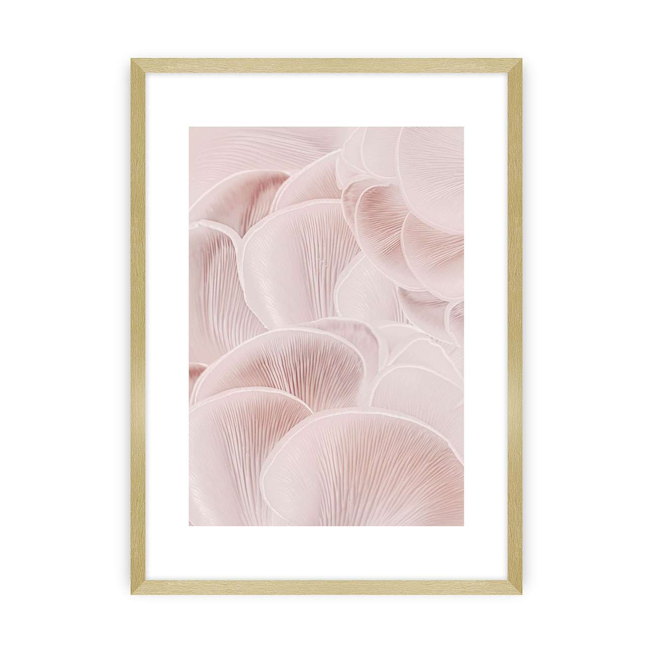 Plakát Pastel Pink I